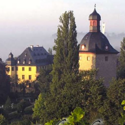 Schloss Vollrads [Marketing, Design]